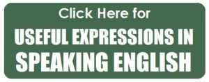 useful expressions in speaking english_